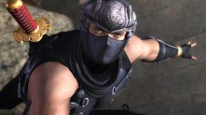 ninjagaidenryu